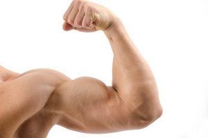 Betain Muskelaufbau