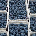 Antioxidantien natürlich oder synthetisch