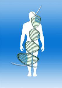 Vitamin B12 Schwangerschaft Stillzeitdiabetes