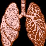 Athma Multivitamine Allergie