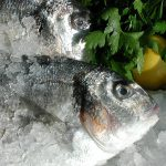 fisch omega 3 anti ageing