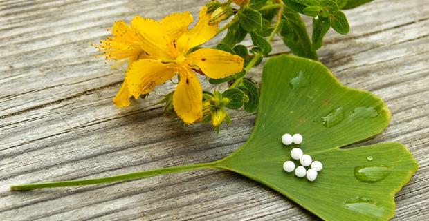 Ein Ginkgo-Blatt mit Tabletten