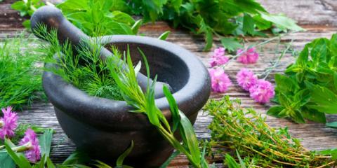 heilpflanzen und heilkraeuter
