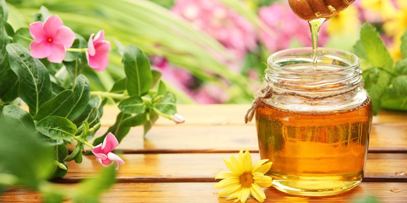 Honig enthält Fructose