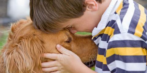 Autistischer Junge mit Hund