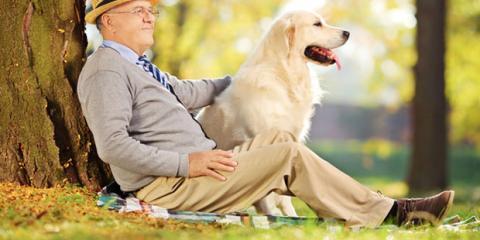 Richtiges Sitzen hilft bei Krampfadern