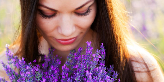 Lavendel hilft bei Schlafstörungen