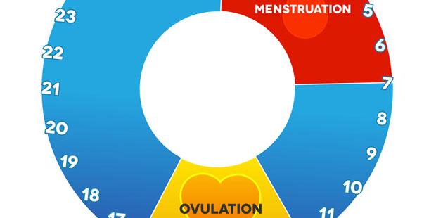 Menstruationszyklus einer Frau