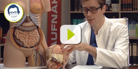 Dr. Johannes erklärt, wie die Tinnitus-Retraining-Therapie hilft, Ohrgeräusche zu überhören