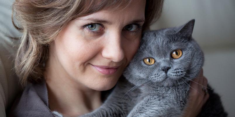 Katzen können Toxoplasmose übertragen